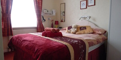 The Bronte Guesthouse - Double Room